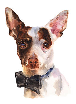 Chihuahua Painting by Alison Fennell