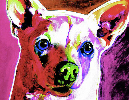 Chihuahua Red by Nixo by Nicholas Nixo