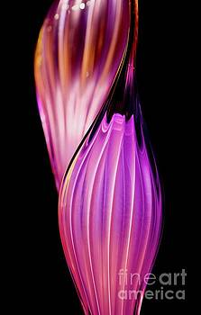 Chihuly Purple by Glennis Siverson
