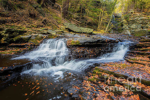 Childs Park Falls by Jerry Fornarotto