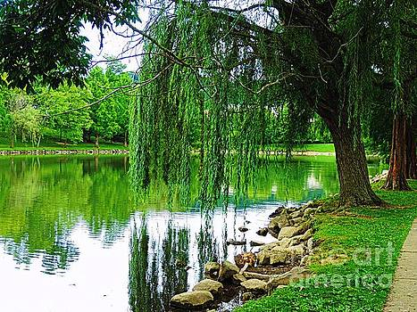 Chillicothe City Park by Angela Weis
