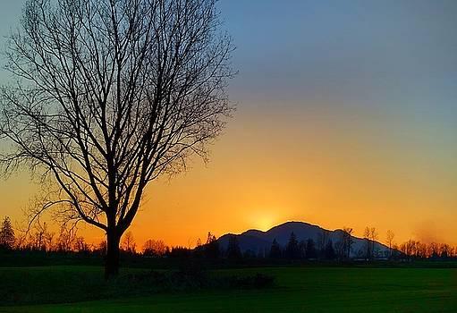Chilliwack, British Columbia by Heather Vopni
