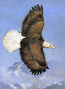 Chillkat Mountains Eagle by Larry Seiler