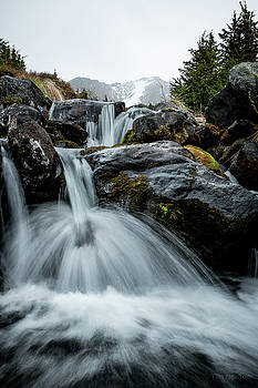 Chilly Spring Shower by Tim Newton