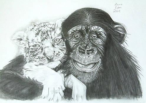 Chimp and white tiger cub by Emma Lyon