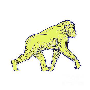 Chimpanzee Walking Side Drawing by Aloysius Patrimonio