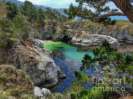 China Cove Beauty by Gregory Schaffer