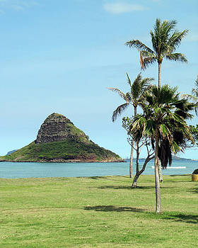 Chinaman's Hat by Shannon Pearson