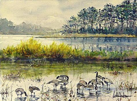 Chincoteague by Bill Hudson