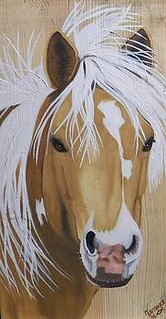 Chincoteague Pony on Wood by Debbie LaFrance