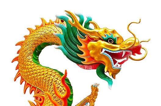 Chinese beautiful dragon isolated on white background by Nichapa Sornprakaysang
