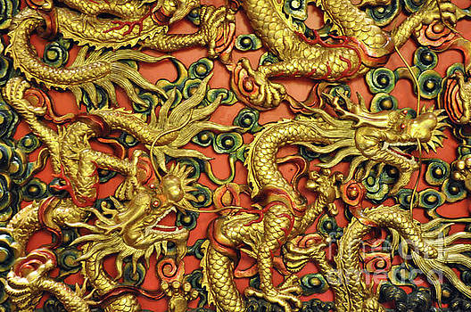 Chinese Dragons by Josephine Cohn