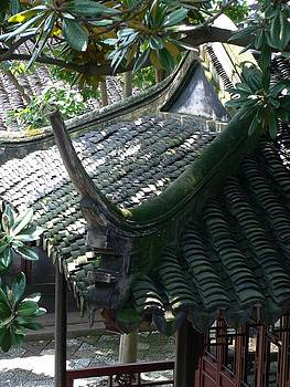 Chinese Garden Roof by Gina S