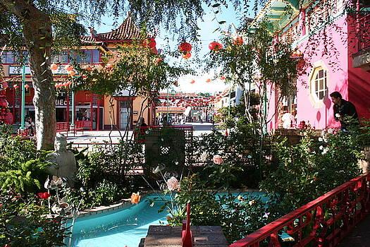 Chinese Garden by Shelly Davis