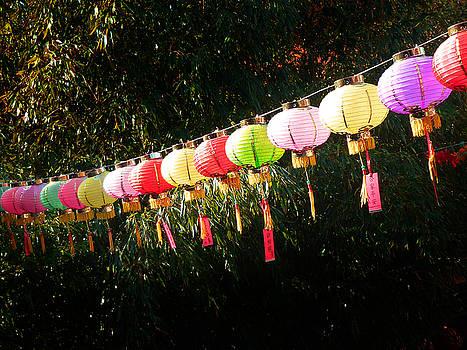 Xueling Zou - Chinese Lanterns 8