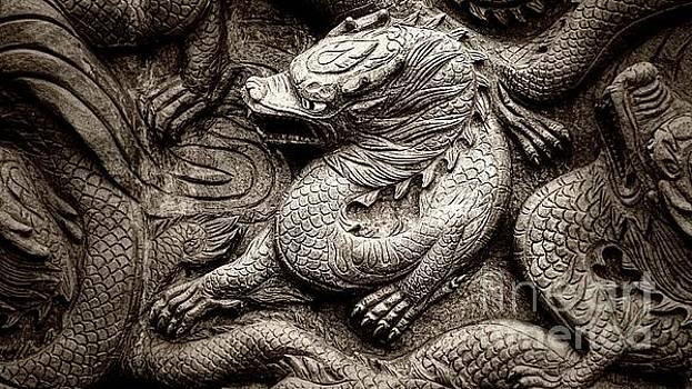 Chinese Mystical Dragon b/w by Ian Gledhill