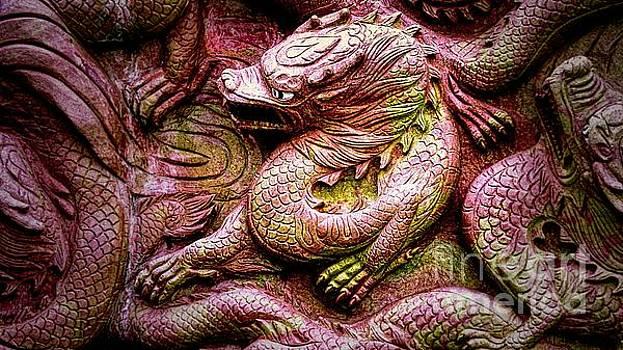 Chinese Mystical Dragon  by Ian Gledhill