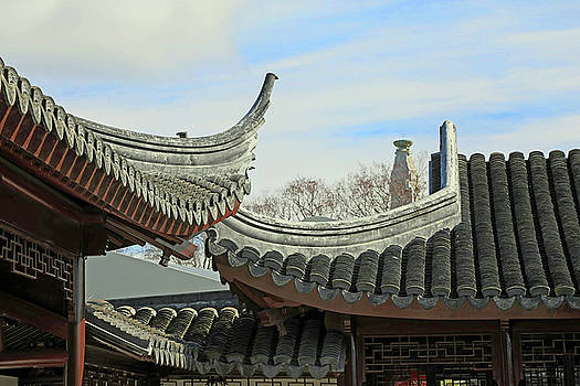 Rooftops of the Chinese Garden by Nareeta Martin