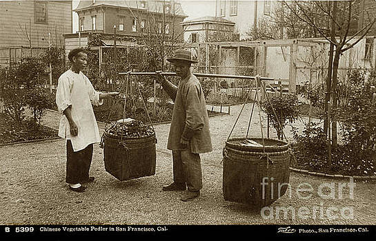 California Views Mr Pat Hathaway Archives - Chinese Vegtable Pedler in San Francisco Circa 1880