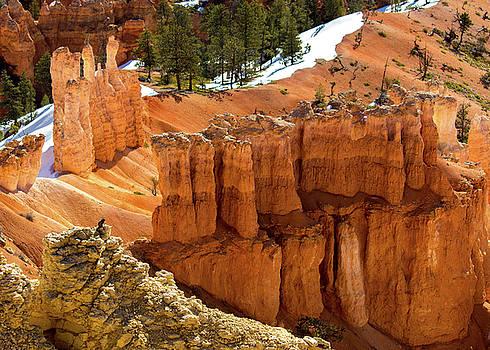 Chipmunk at Bryce Canyon by Jeri Sawall