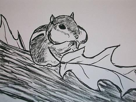Chipmunk by Kristen Hurley