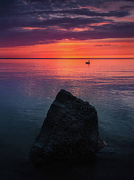 Chippewa Park Sunrise by Cale Best