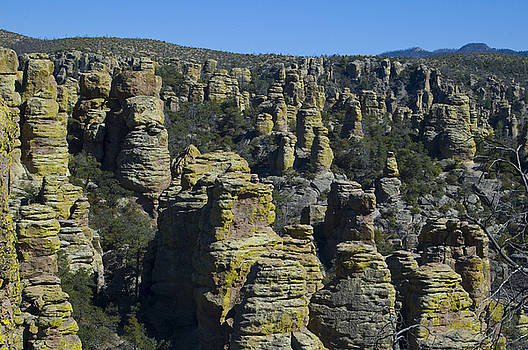 Chiricahua National Monument by Sheri Heckenlaible