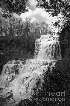 Chittenango Falls Landscape Photo by Melissa Fague