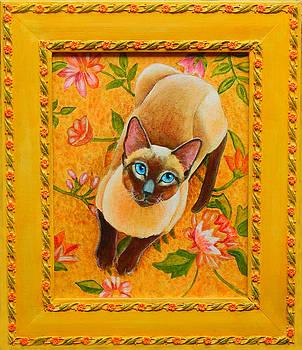 Chocolate Point Siamese Cat by Rachel Armington
