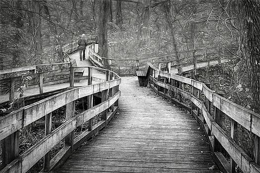 Nikolyn McDonald - Chosen Path