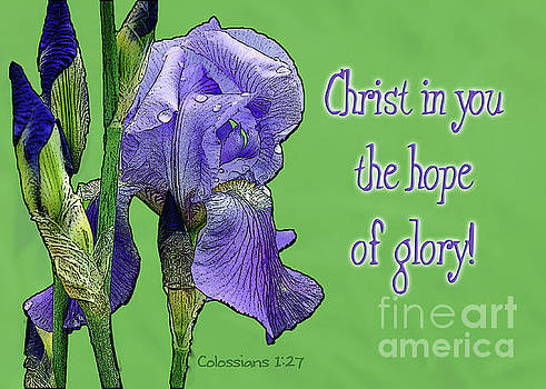 Christ in you the hope of glory by Robin Clifton