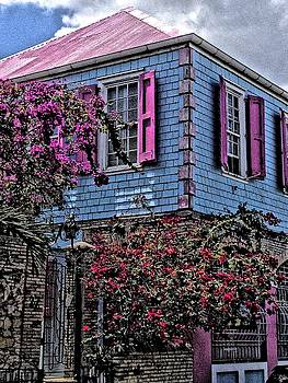 Sydney Solis - Christiansted House