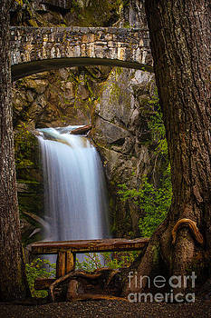 Christine Falls by DS Dodd