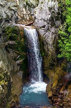 Christine Falls Mt Rainier by Greg Reed