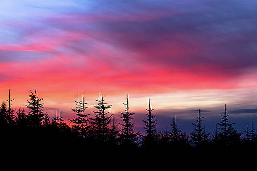 Christmas 2016 Sunset by Tyra OBryant