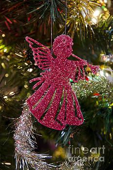 Christmas angel by Steev Stamford