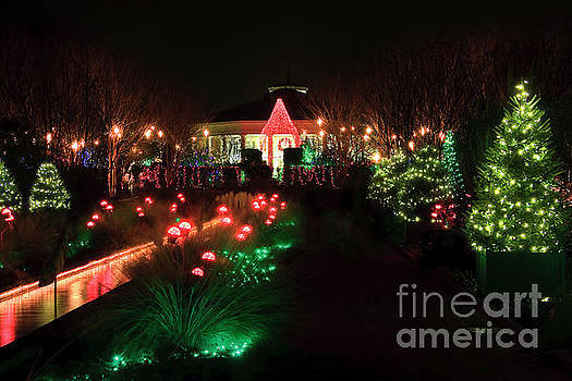 Jill Lang - Christmas at Daniel Stowe Gardens