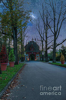 Christmas at the Biltmore Estate in Asheville North Carolina by Dale Powell