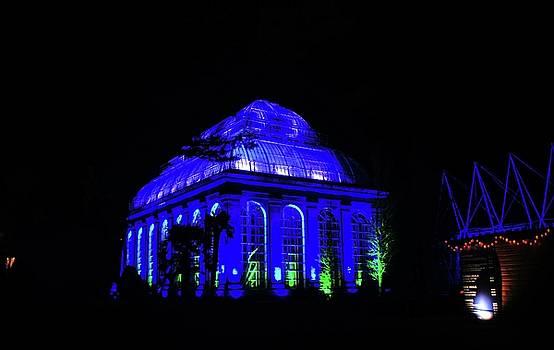 Christmas at The Botanics 13 by Nik Watt