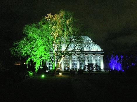 Christmas at The Botanics 22 by Nik Watt