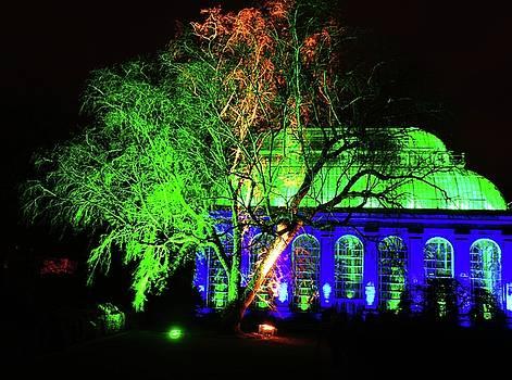 Christmas at The Botanics 23 by Nik Watt
