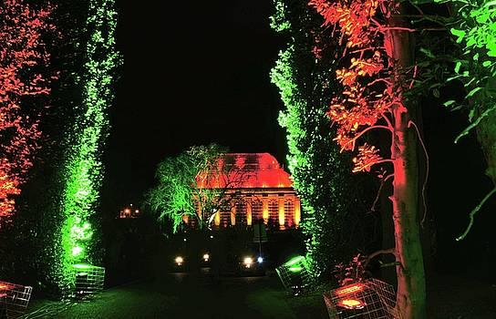 Christmas at The Botanics 24 by Nik Watt