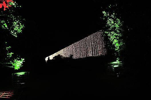 Christmas at The Botanics 26 by Nik Watt