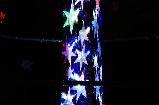 Christmas at The Botanics 4 by Nik Watt