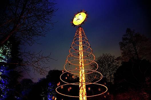 Christmas at The Botanics 8 by Nik Watt