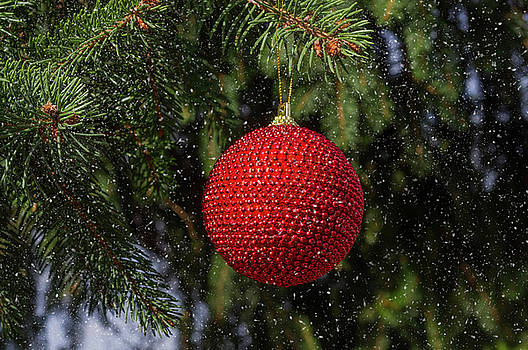 Christmas ball in snow by Paulo Goncalves