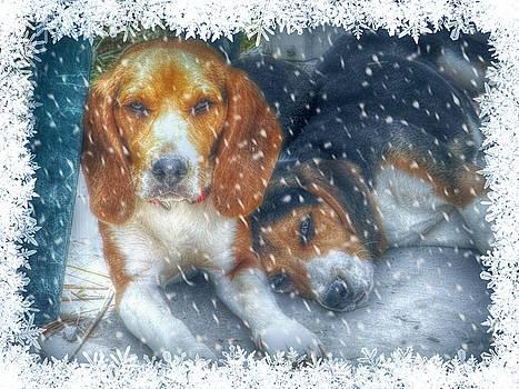 Christmas Brothers by Amanda Eberly-Kudamik