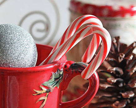 Christmas Candy Canes by Terri Tiffany