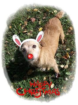 Christmas card - Happy Christmas by Ivana  Egic