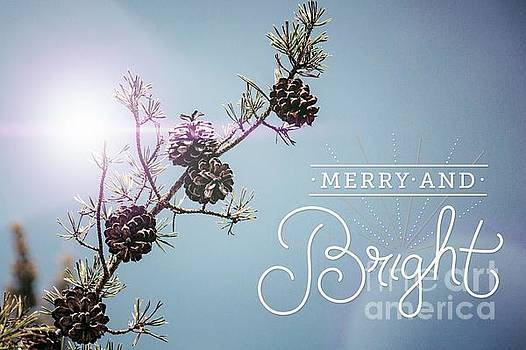 Christmas card by Trish Casey-Green